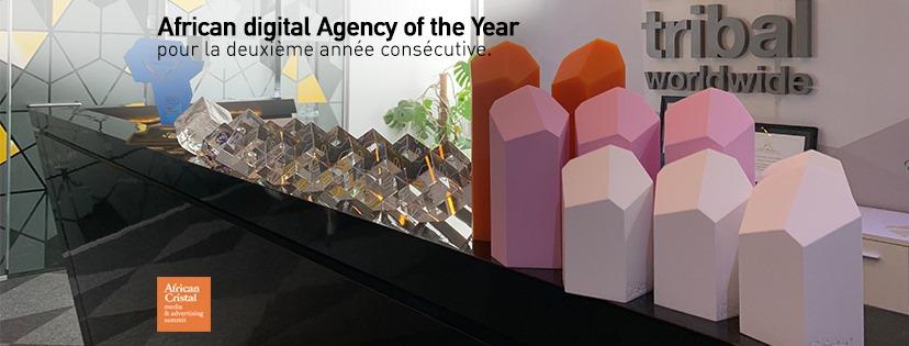 A l'occasion de l'african Cristal 2019, l'agence Tribal a remporté le titre d'agence digital africaine de l'année pour la deuxième année consécutive_@nytsee